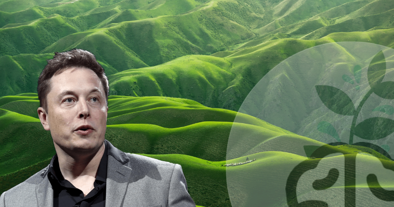 Elon Musk libera patentes tesla