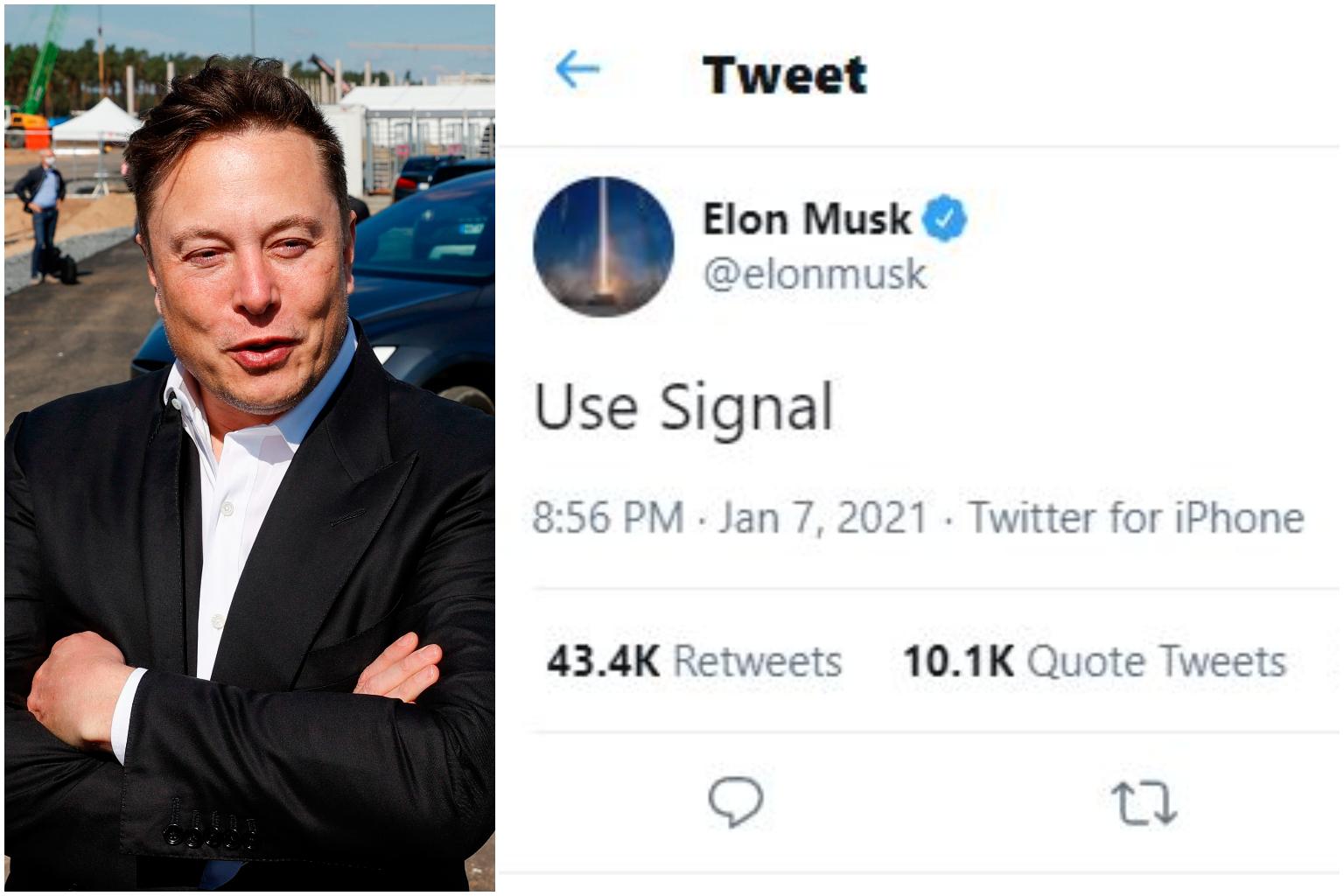use signal twitter elon musk